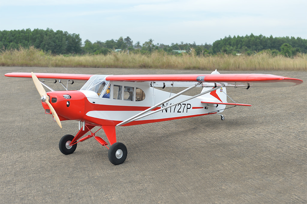 Piper Pa 18 Super Cub Blackhorsemodel